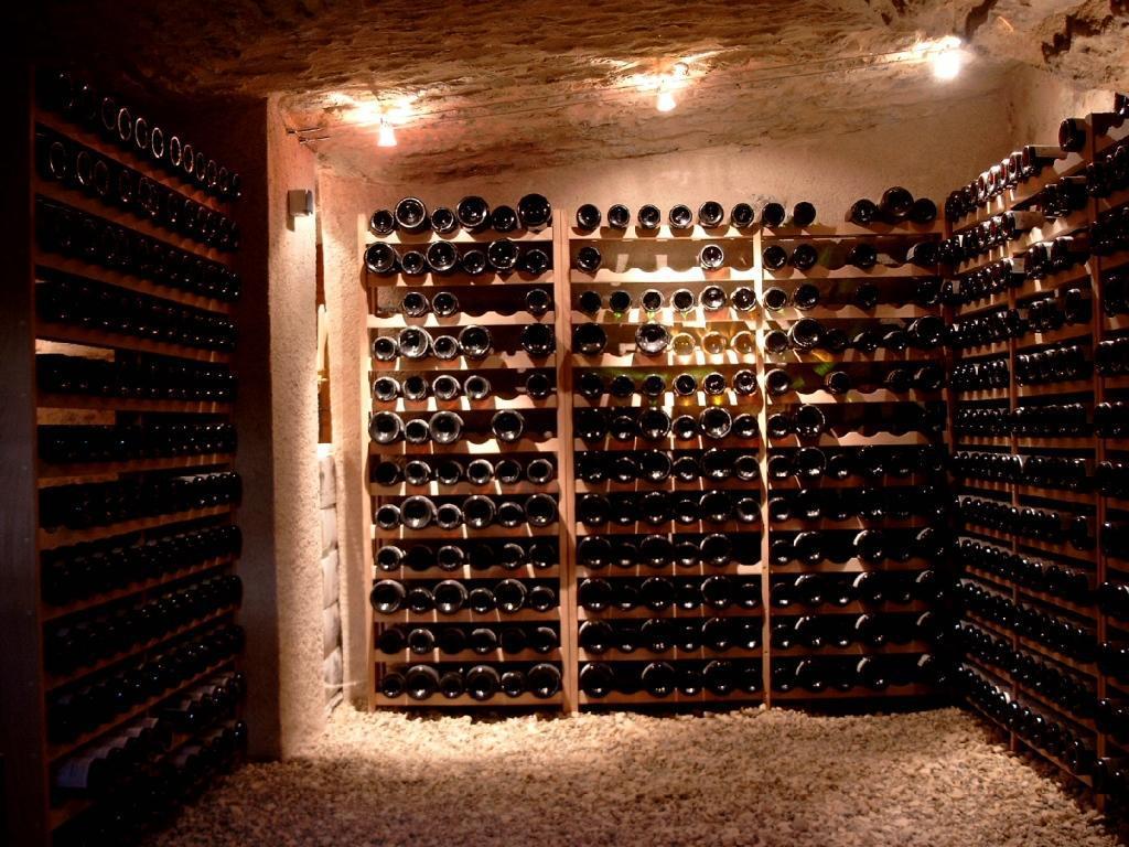Cave à vin : idéal pour les vins